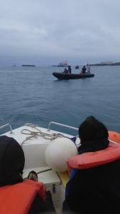 2月1日 大浦湾で監視行動